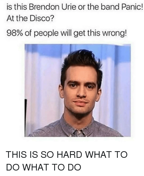 Brendon Urie Memes : brendon, memes, Brendon, Panic!, Disco?, People, Wrong!, ME.ME