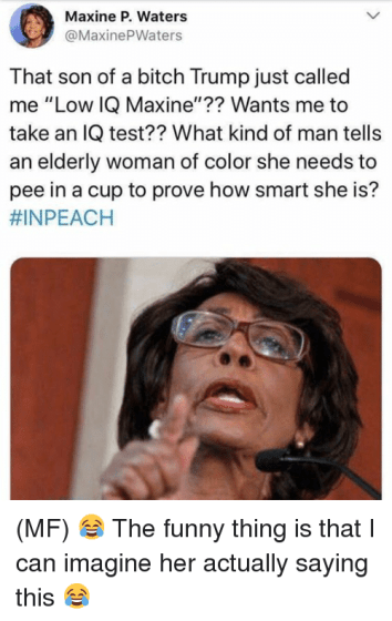 Image result for Mad Maxine crazy things she said