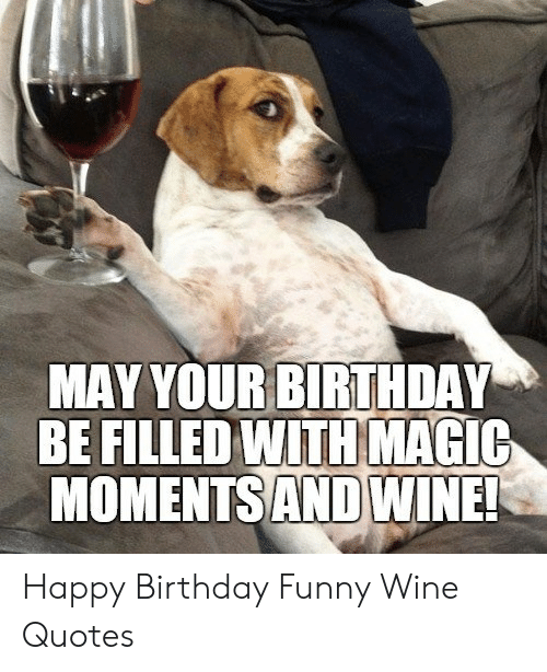 Happy Birthday Funny Wine : happy, birthday, funny, BIRTHDAY, FILLED, MAGIC, MOMENTSAND, WINE!, Happy, Birthday, Funny, Quotes, ME.ME