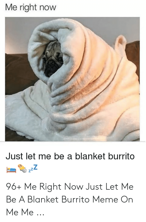 Dog Wrapped In Blanket Meme : wrapped, blanket, Download, Blanket, Burrito