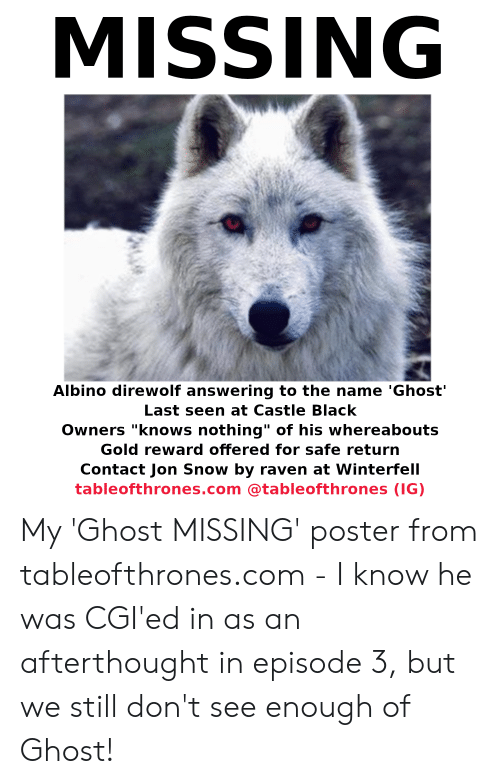 missing albino direwolf answering