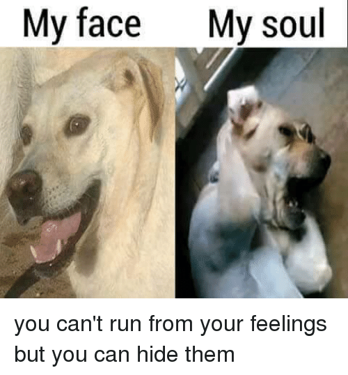 Run Dank Memes And Running My Face My Soul You Cant