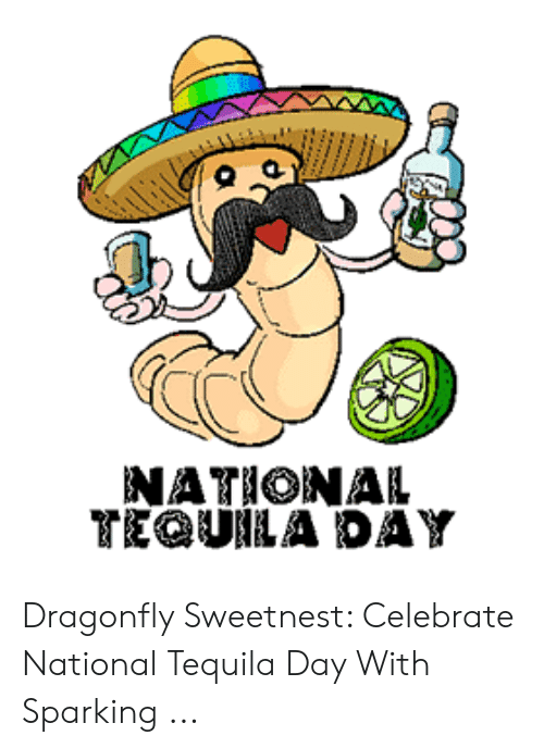 National Tequila Day Meme : national, tequila, NATIONAL, TEQUILA, Dragonfly, Sweetnest, Celebrate, National, Tequila, Sparking, ME.ME