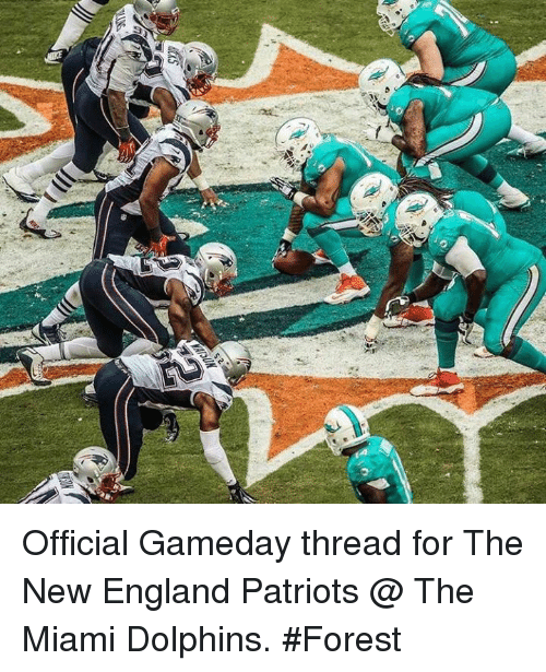 Patriots Dolphins Meme : patriots, dolphins, Official, Gameday, Thread, England, Patriots, Miami, Dolphins, #Forest, ME.ME