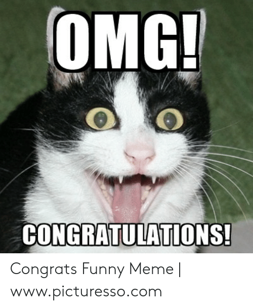 Congrats Funny Meme : congrats, funny, Congrats, Congratulations, Images, Funny