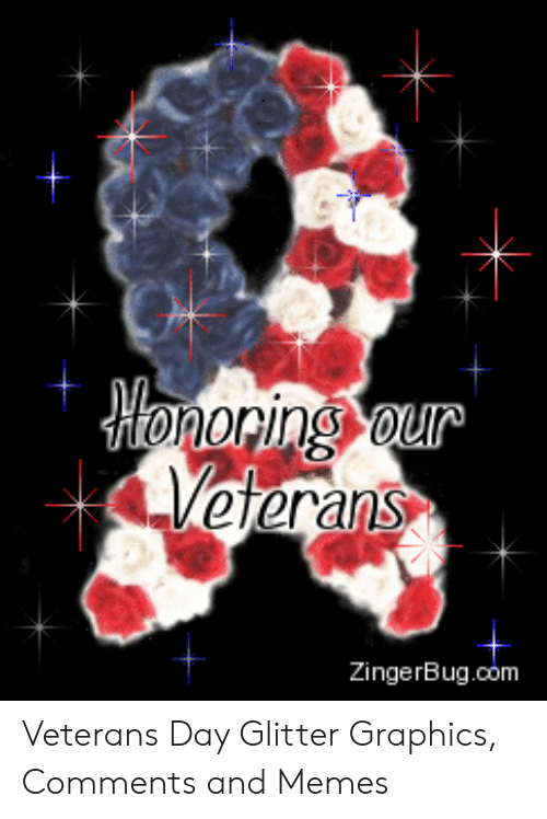 oring our veterans zingerbugcom