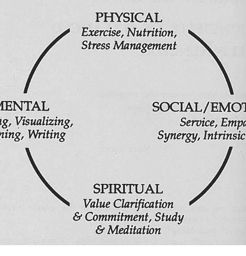 PHYSICAL Exercise Nutrition Stress Management MENTAL