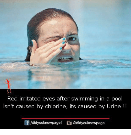 Red Irritated Eyes After Swimming in a Pool Isn't Caused ...