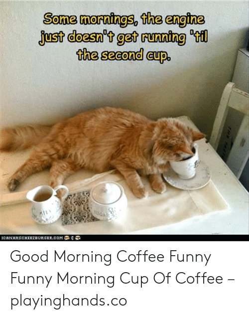 Funny Pictures Good Morning Coffee - Funny PNG