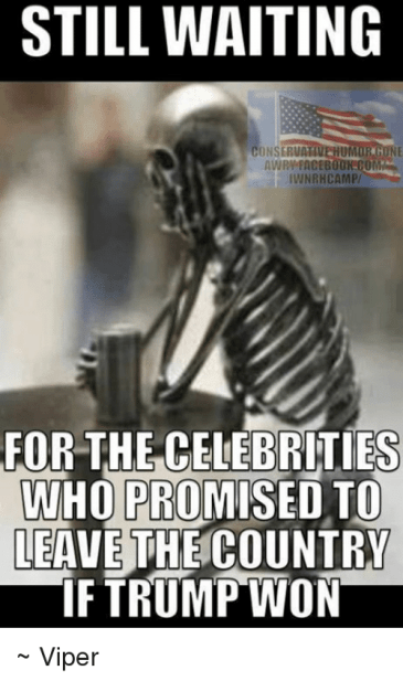 Image result for celebrities that promised to leave the country when trump won memes