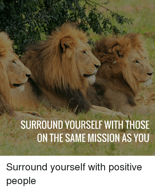 Surround Yourself With Those On The Same Mission As You : surround, yourself, those, mission, Surround, Yourself, Those, Mission, Quotes