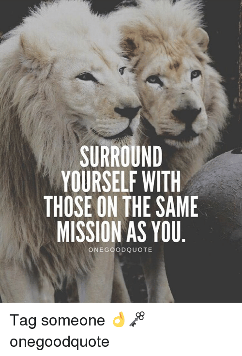 Surround Yourself With Those On The Same Mission As You : surround, yourself, those, mission, Surround, Yourself, Those, Mission, Quote, Quotes