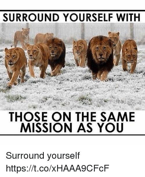 Surround Yourself With Those On The Same Mission As You : surround, yourself, those, mission, SURROUND, YOURSELF, THOSE, MISSION, Surround, Yourself, HttpstcoxHAAA9CFcF, ME.ME