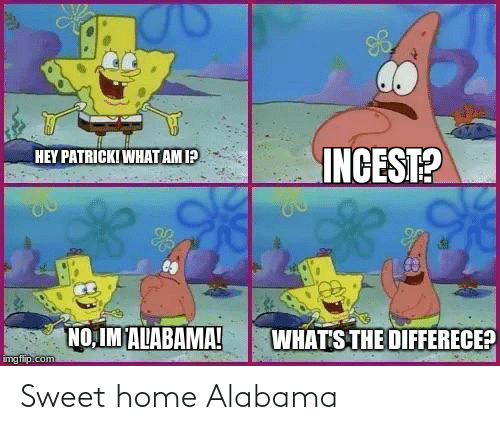 It all began in 2008 when a youtuber came up with this meme. Sweet Home Alabama Funny Meme On Me Me