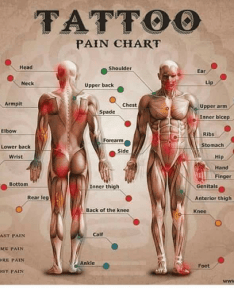 Dank head and tattoos tattoo pain chart shoulder ear neck upper also back armpit chest rh me