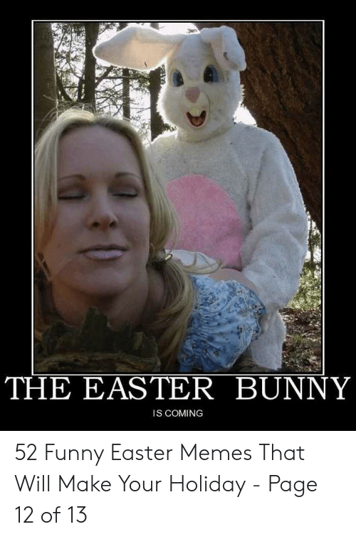 Funny Easter Memes For Adults : funny, easter, memes, adults, Funny, Memes, Easter, Factory