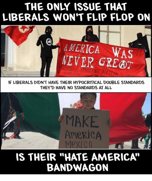 Image result for liberals hate america meme