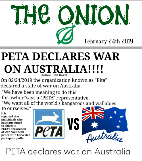 the onion february 24th