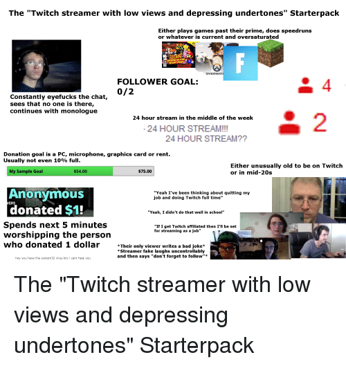 the twitch streamer with