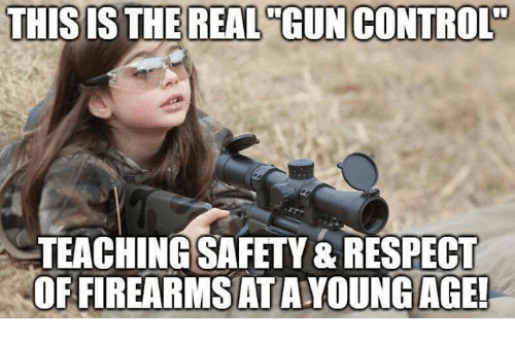 Image result for gun control memes