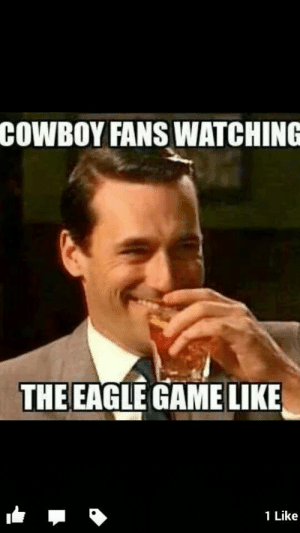Eagles Losing Meme : eagles, losing, Eagles, Memes, Super, Memes,, Bears