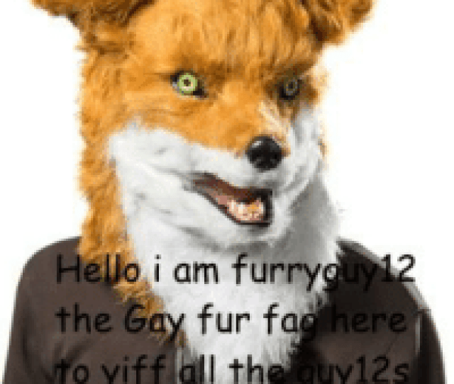 Hello I Am Furry The Gay Fur Fac Here O Yiff All The Guys Fac Meme On Me Me