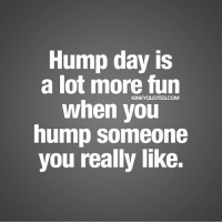 25 Best Hump Day Quotes Memes From Memes The Memes