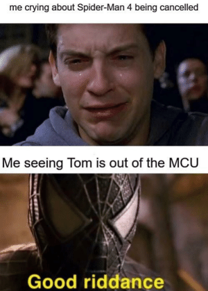 Spiderman Good Riddance : spiderman, riddance, Crying, About, Spider-Man, Being, Cancelled, Seeing, Riddance, Worthy, Format, ME.ME