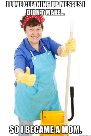 Mom Cleaning Meme : cleaning, Cleaning, Memes, After, Memes,