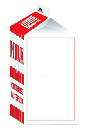 Missing Child Milk Carton Template : missing, child, carton, template, Missing, Carton, Memes, Template, Memes,, Person