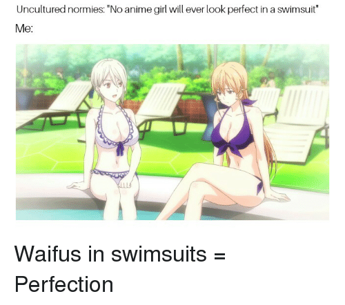 uncultured normies no anime