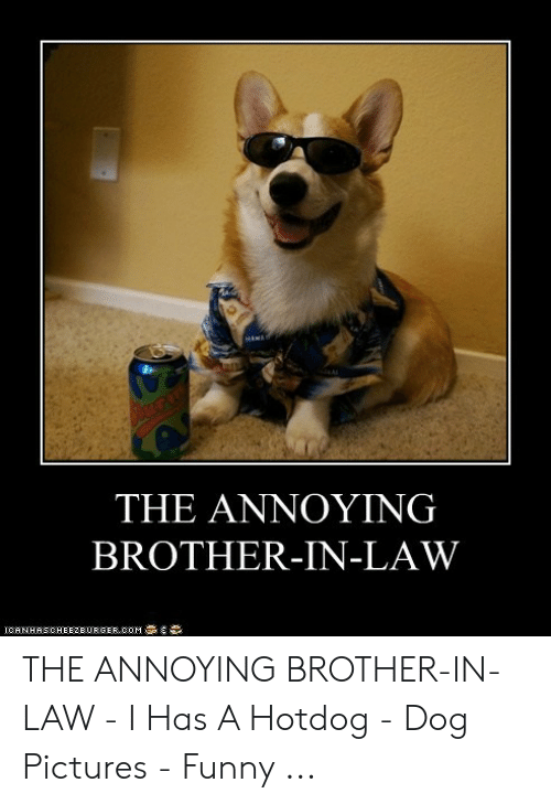 Brother In Law Meme : brother, ANNOYING, BROTHER-IN-LAW, CANHASCHEE2EURGER, BROTHER, -IN-LAW, Hotdog, Pictures, Funny, ME.ME