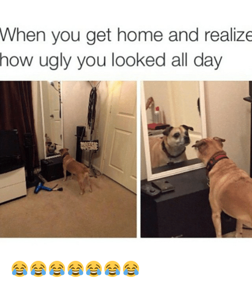 When You Get Home and Realize How Ugly You Looked All Day ??????? | Funny Meme on ME.ME