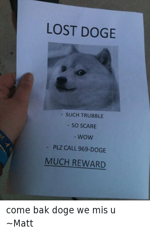 25 Best Memes About Doge Scare and Wow Doge Scare
