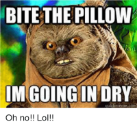 25+ Best Memes About Bite the Pillow Im Going in Dry