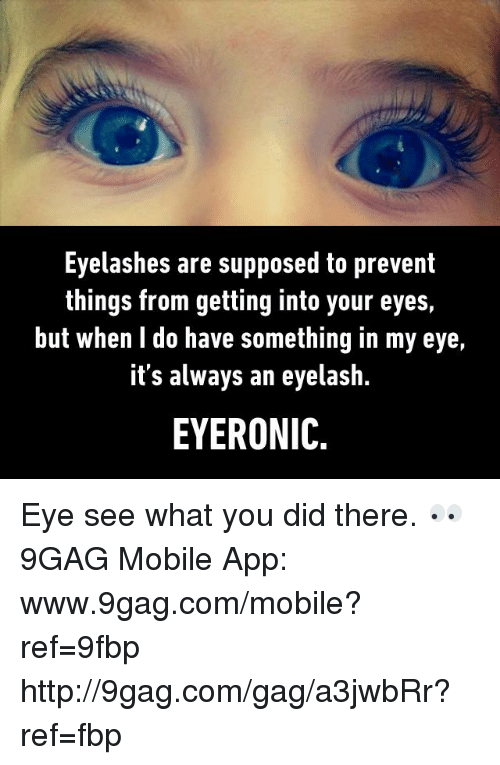 Eyelashes Are Supposed to Prevent Things From Getting Into ...
