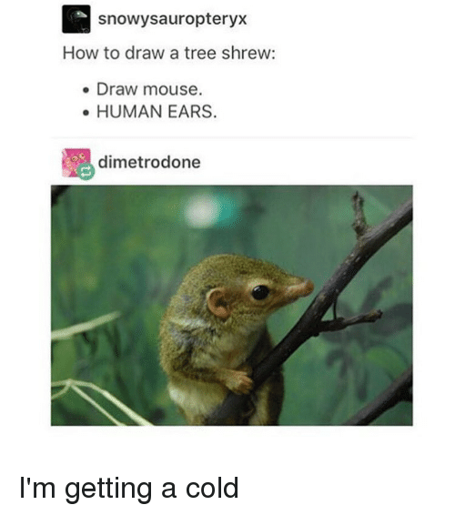 How Draw Someone Laughing