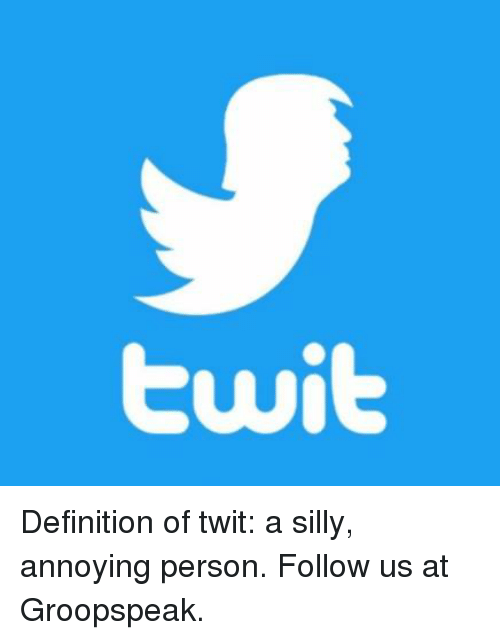 Twit Definition of Twit a Silly Annoying Person Follow Us at Groopspeak   Definition Meme on SIZZLE