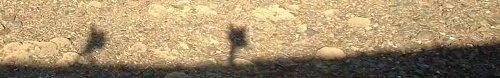 Sombras sobre los Tajos de la Virgen