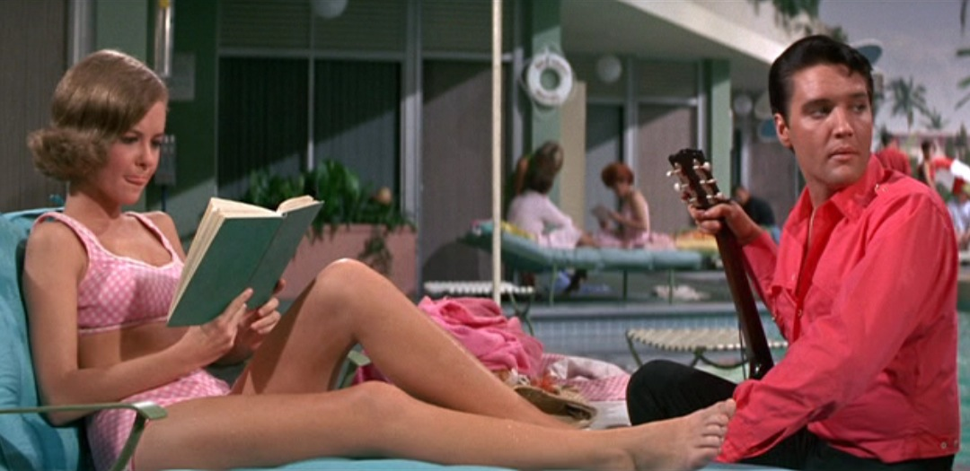 https://i0.wp.com/pics.wikifeet.com/Shelley-Fabares-Feet-280087.jpg