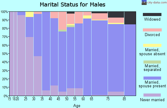 Zip code 85253 marital status for males