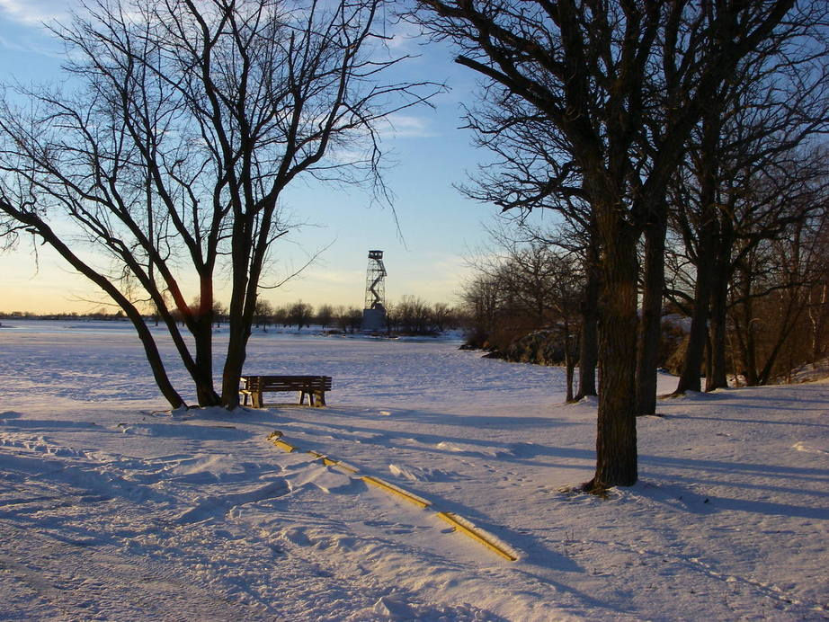 Ranier, MN : Lonely Winter-isolation depicted down by 7 oaks