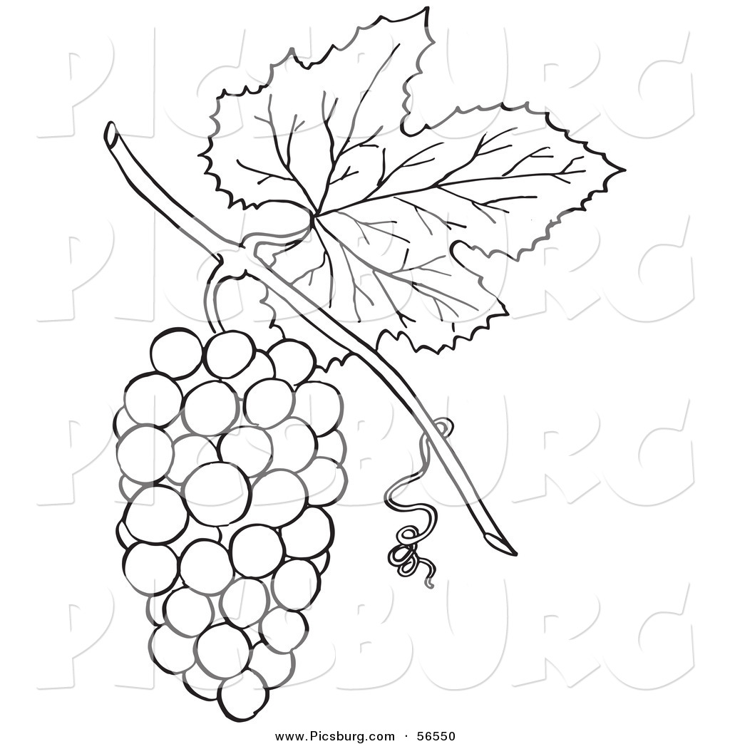 Clip Art Of A Coloring Page Of A Bunch Of G S With A