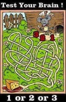 find-rat-reach-cheese-brainteaser