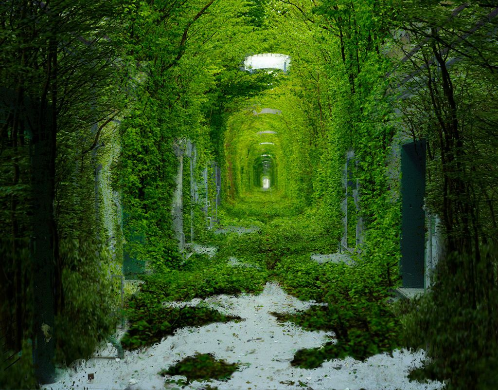 beautiful-photos-of-tunnel-of-love-in-kleven-ukraine-best-romantic-place-pictures