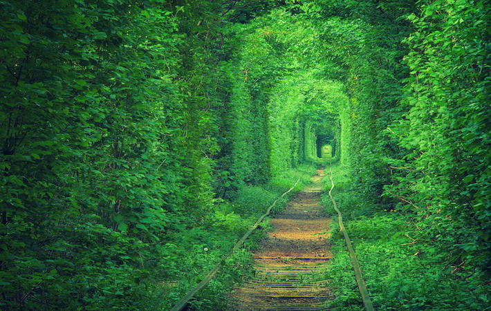 Tunnel Of Love Ukraine Best Romantic Place in the World