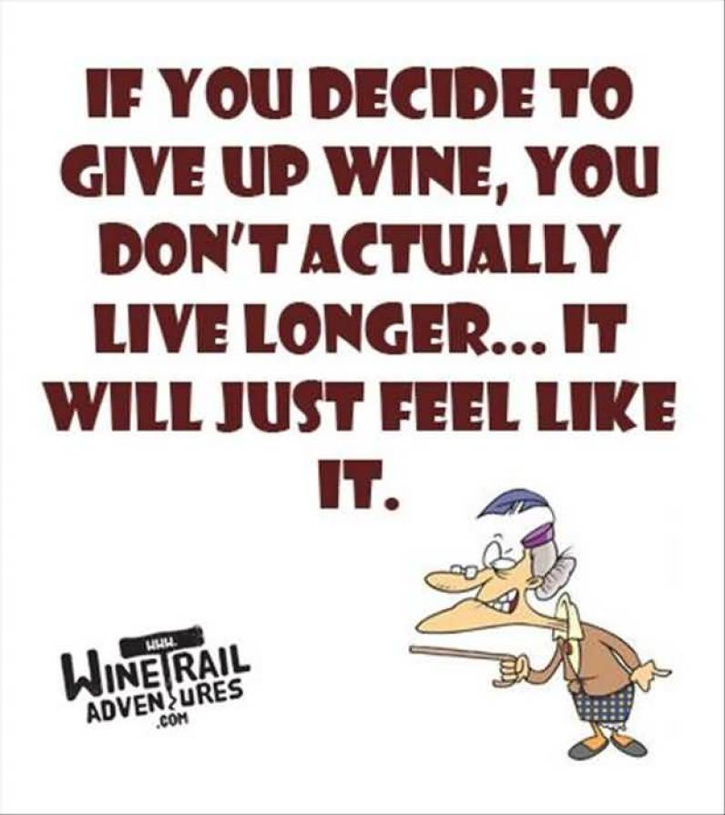 if-you-decide-to-give-up-wine-you-dont-actually-live-longer-it-will-just-feel-like-it