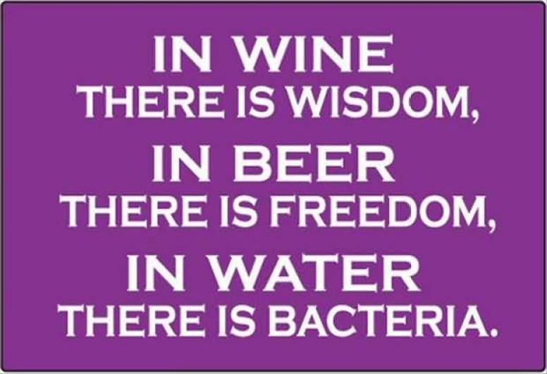 in-wine-there-is-wisdom-in-beer-there-is-freedom-in-water-there-is-bacteria