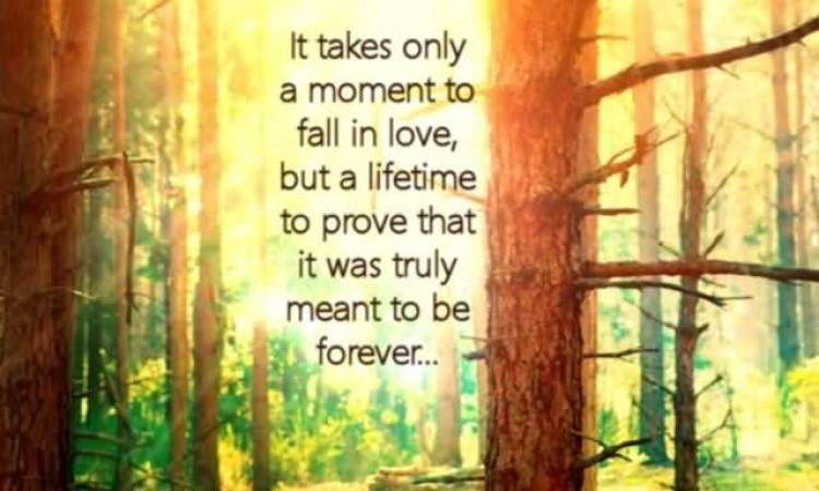 it-takes-only-a-moment-to-fall-in-love-but-a-lifetime-to-prove-that-it-was-truly-meant-to-be-forever