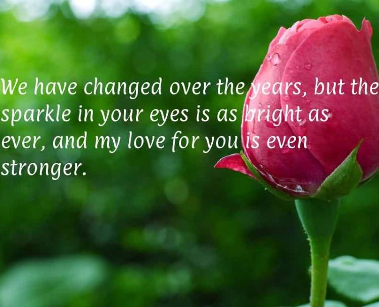 we-have-changed-over-the-years-but-the-sparkle-in-your-eyes-is-as-bright-as-ever-and-my-love-for-you-is-even-stronger